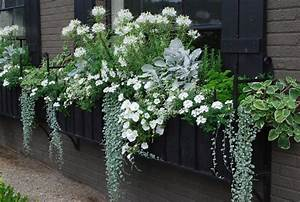 Hängepflanzen Für Balkonkästen : die besten 25 blumenk sten bepflanzen ideen auf pinterest ~ Michelbontemps.com Haus und Dekorationen