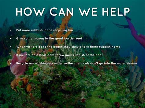 great barrier reef  srusse