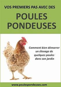 Comment élever Des Poules Pondeuses : comment bien choisir la nourriture de vos poules poupoules jardin poulailler poule ~ Dode.kayakingforconservation.com Idées de Décoration