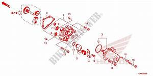 Honda Pioneer 1000 Parts Diagram