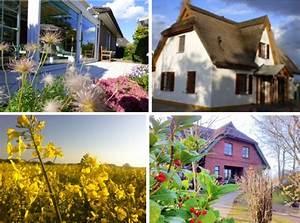 Kreditzinsen Aktuell Immobilien Kauf : werbung f r eine maklerin aus gegebenem anlass szene ~ Jslefanu.com Haus und Dekorationen