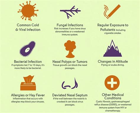 sinus infections causes sinusitis contagious prevention symptoms cure inflammation cause acute factors permanently allergy chronic types disease last head