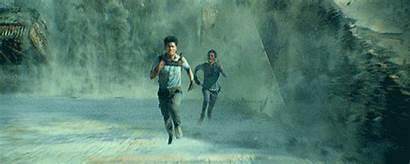 Maze Runner Glade Brien Thomas Dylan Minho