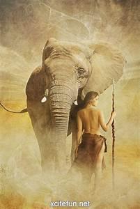 and elephant xcitefun net