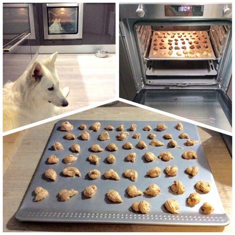 17 meilleures id 233 es 224 propos de jouets pour chiens faits maison sur friandises