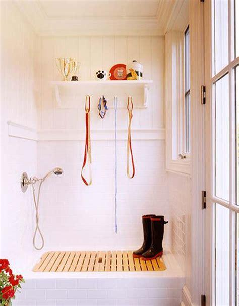 brilliant bathroom ideas   pet dog