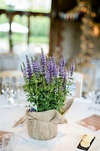 Lavendel Pflanzen Im Topf : lavendel im topf provence flair f r zuhause ~ Frokenaadalensverden.com Haus und Dekorationen