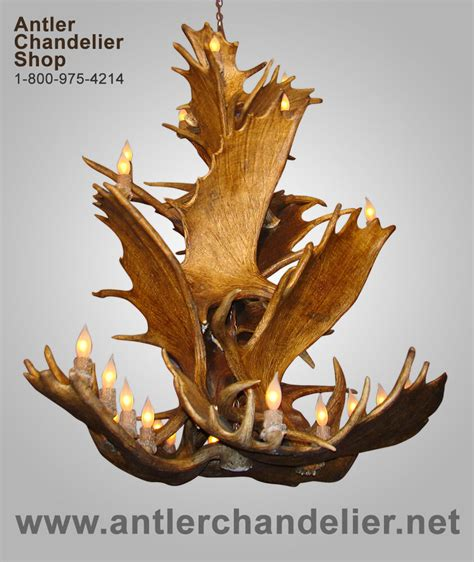 Antler Chandelier Shop by Real Moose Antler Cascading Chandelier Rustic Ls Acs