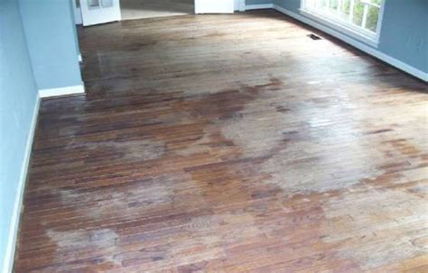 restore shine to laminate floor clean restore shine your laminate floor will also seal protect laminate ebay