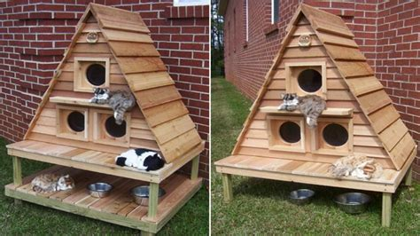 Insulated Outdoor Cat Houses Multiple Outdoor Cat House