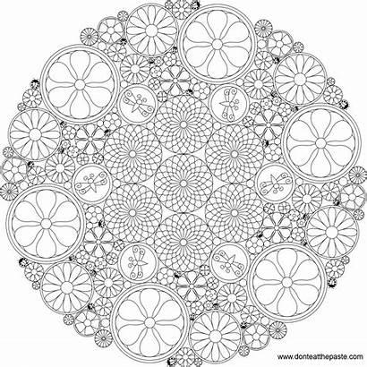 Mandala Flower Coloring Pages Intricate Printable Circle