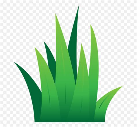 green grass clipart pictures of grass free best