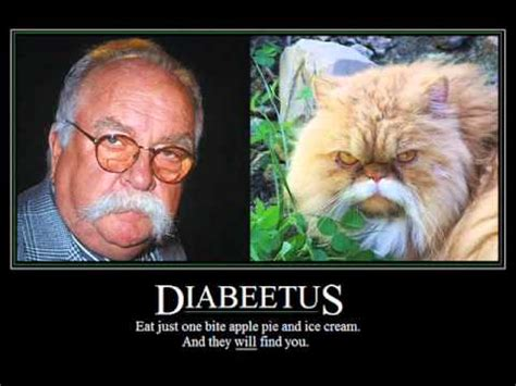 Diabeetus Cat Meme - wilford brimley s last liberty commercial before quitting youtube