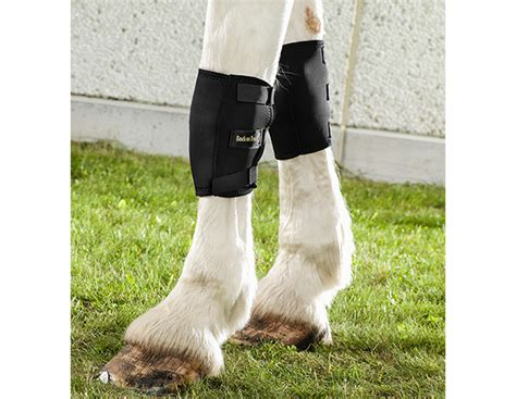 knee boots therapeutic horse track wrap equine blood circulation