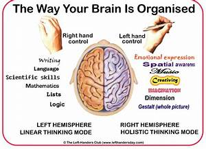 10 Mind Blowing Amazing Facts About Human Brain | Reckon Talk