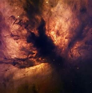 File:Flame Nebula NGC 2024.jpg - Wikipedia