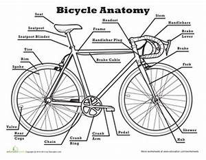 anatomy of a bicycle scouting pinterest worksheets With mtb parts diagram