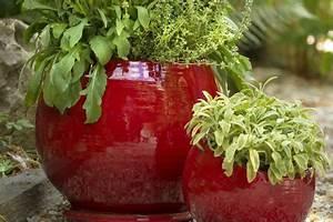 Poterie D Albi : les poteries d 39 albi l 39 art de vivre fran ais botanic ~ Melissatoandfro.com Idées de Décoration