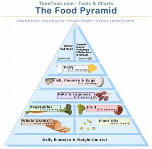 Harvard Food Pyramid | Foto Bugil 2017