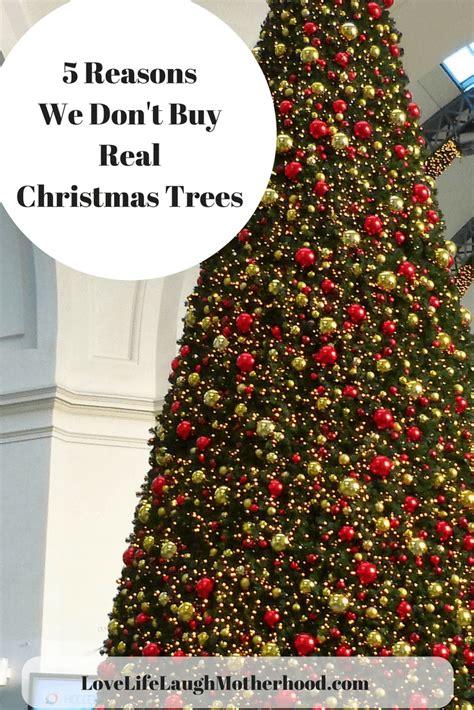 where to buy a christmas tree near me tree stunning buy real trees tree salem bible church ncsabuy derby