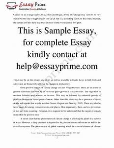 What Is Global Warming Essay Chinese Essay Prompts What Is Global  What Is Global Warming And Its Effects Essay