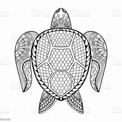 Coloring Turtle Pages Adult Sea Drawn Abstract