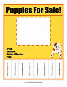 Puppies for sale flyer for Puppy for sale flyer templates