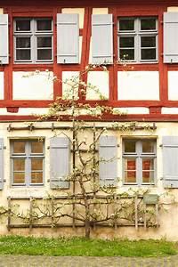 Freistehendes Spalier Bauen : spalier wikipedia ~ Somuchworld.com Haus und Dekorationen
