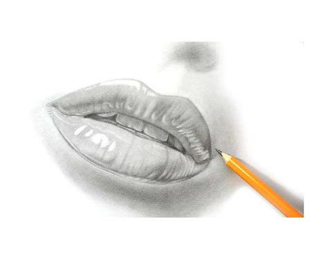 drawing  pencil  drawing lessons teach