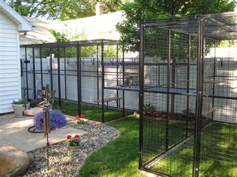 cat lucky outdoor cat cages keep your pet safe