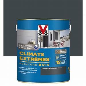 Peinture bois extérieur Climats extrêmes V33, gris anthracite, 2 5 l Leroy Merlin
