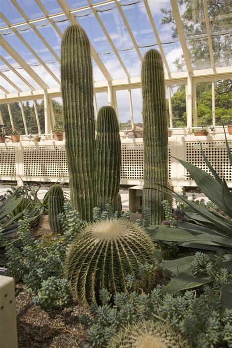 national botanic gardens  ireland botanic garden