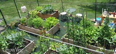 Vegetable Garden Design-choosing The Right Layout For