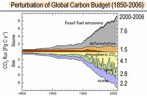 Carbon Sinks Failing To Keep Up With Emissions