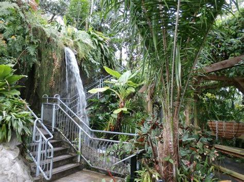 myriad botanical gardens inside the bridge picture of myriad botanical