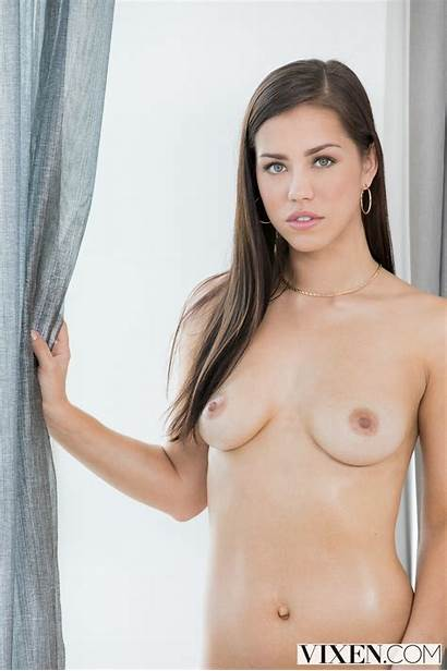 Alina Lopez Adult Pornstar Star Stars Adultdvdtalk