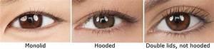 eyeshadow | Makeup for Beginners