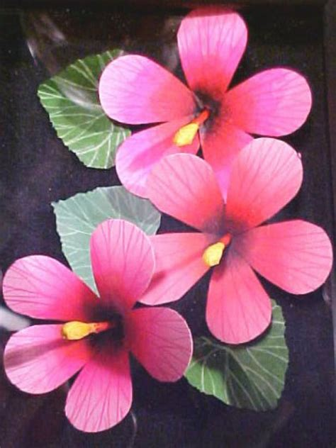 create  dimensional cards  paper hibiscus flowers