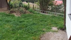 Wann Keimt Rasen : nachsaat von rasen mit blumenerde frag mutti ~ Lizthompson.info Haus und Dekorationen