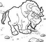 Yak Coloring Cartoon Pages Male sketch template