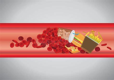 vaso sanguigno macro affettata vaso sanguigno con gli eritrociti