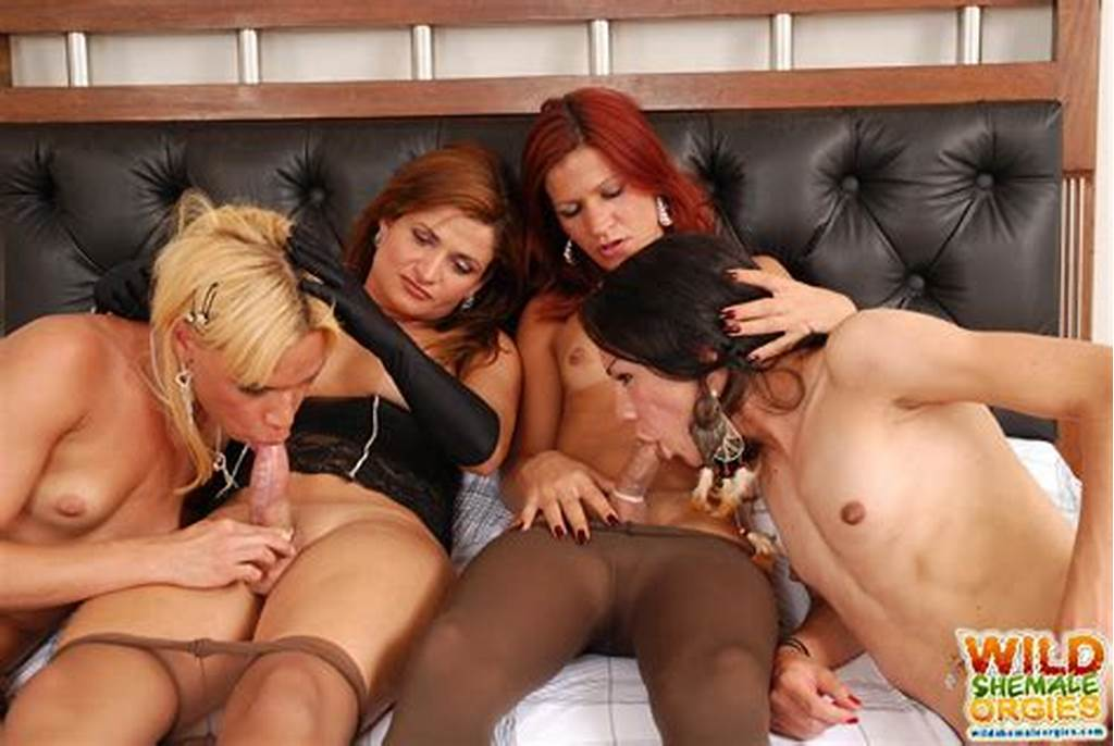 #Four #Trannies #Have #Pantyhose #Orgy
