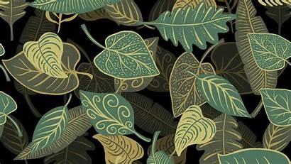 Leaves Pattern Texture Patterns Leaf 4k Wallpapers