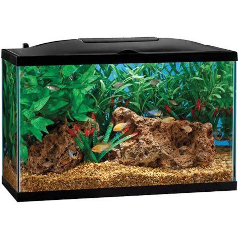 fish aquarium 29 gallon top fin 29 gallon hooded