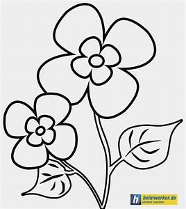 Blumen Zum Ausdrucken : blumen vorlagen zum ausdrucken gut malvorlagen blumen innen window color malvorlagen blumen ~ Watch28wear.com Haus und Dekorationen