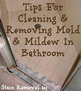 Cleaning and removing mold mildew in bathroom stains for Best bathroom cleaner for mold and mildew