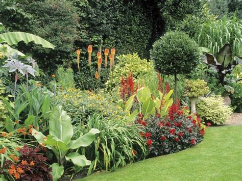 tropical garden bed 169 best images about garden ideas on pinterest kangaroo paw agaves and tropical