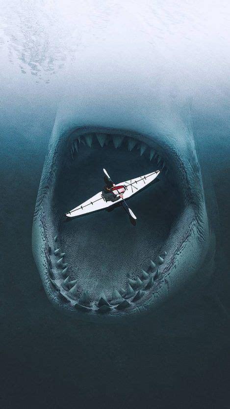 megalodon shark iphone wallpaper iphone wallpapers