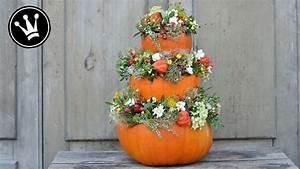 Herbstgestecke Für Draußen : video k rbispyramide selber machen mit naturmaterialien ~ Michelbontemps.com Haus und Dekorationen