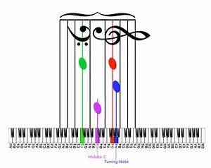Inside A Piano Diagram